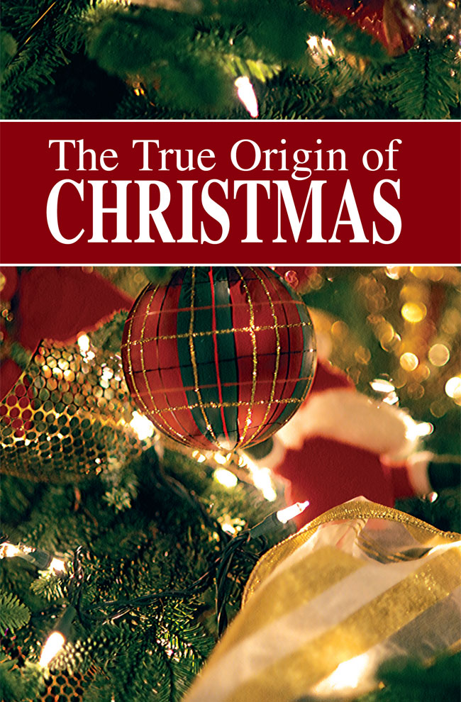 ttooc_650jpg - Origin Of Christmas Tree