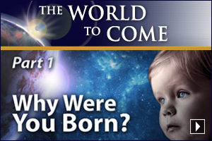 Why Were You Born? (Part 1)