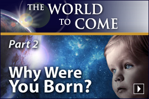 Why Were You Born? (Part 2)