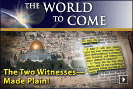 The Two Witnesses—Made Plain!