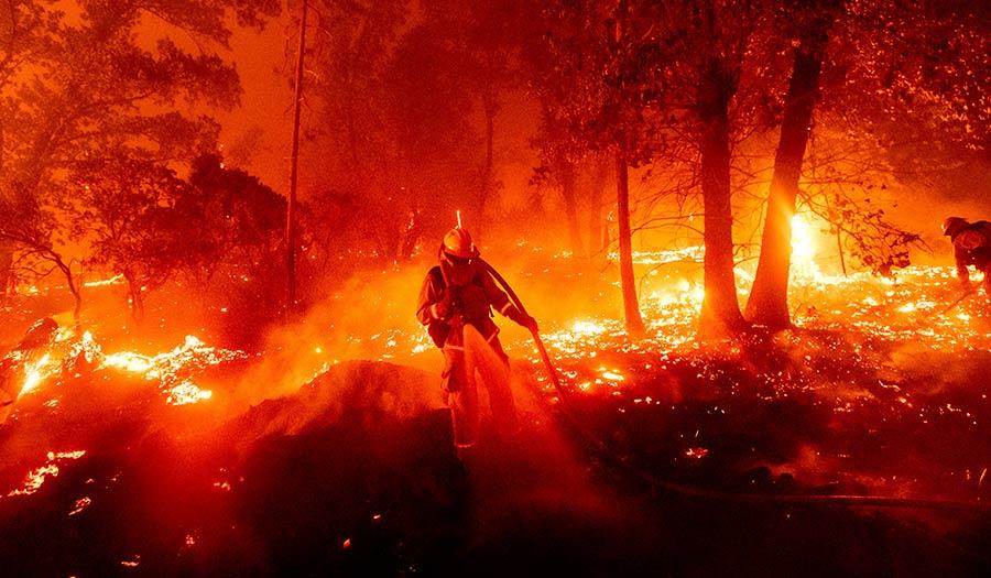California_Firefighter_Forest-apha-200908.jpg