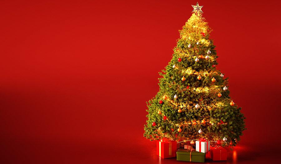 Christmas_Tree_Redbackground-apha-201026.jpg