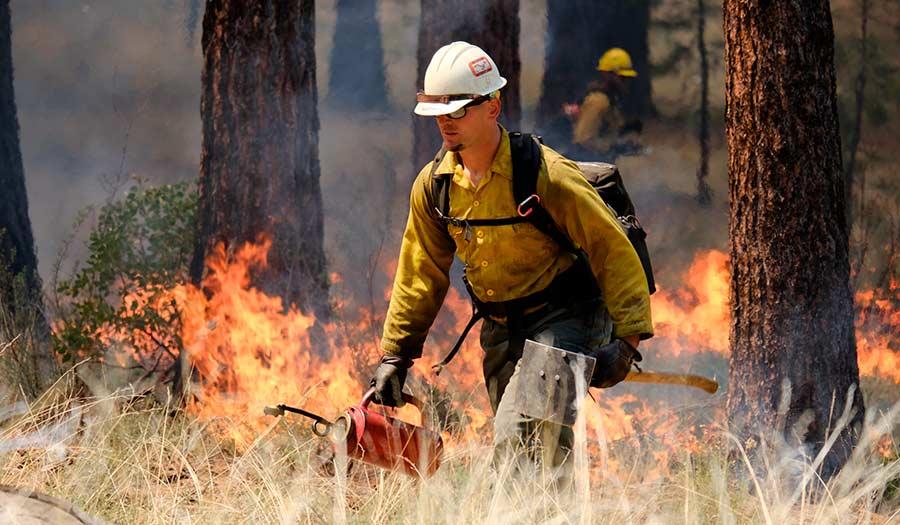 Prescribed_Burn_Firefighter-apha-210528.jpg