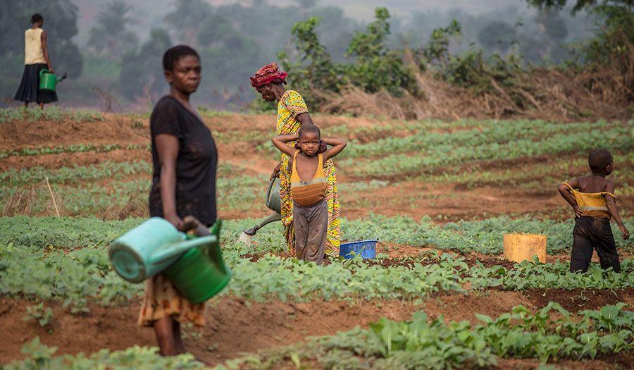 congo_woman_farms-apha-170912.jpg