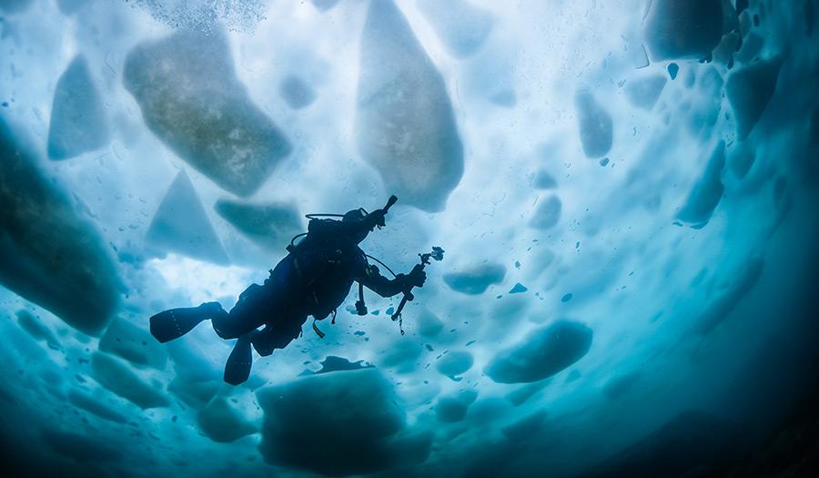 diver_under_ice-apha-180619.jpg