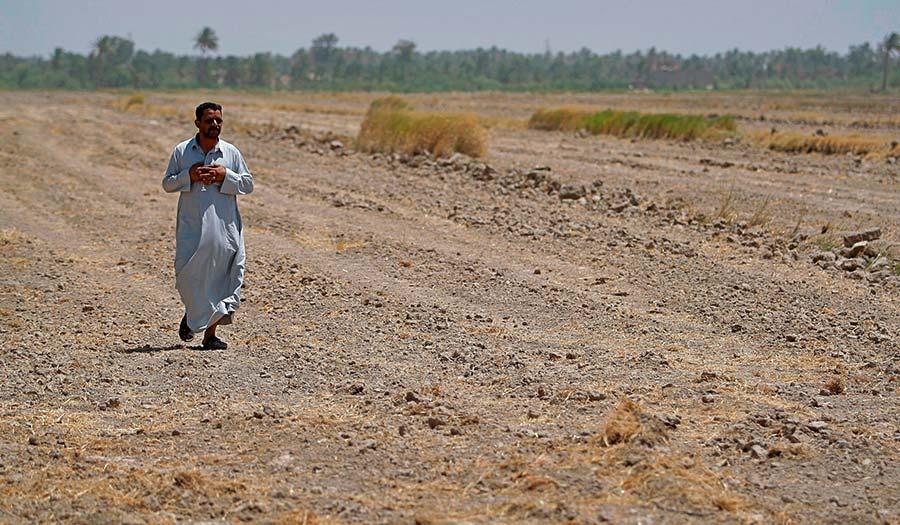 iraq_watercrisis_farming-apha-180706.jpg